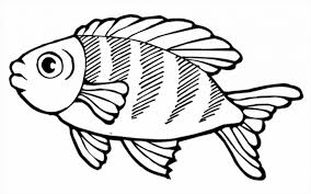 bass fish realistic coloring pages picture color