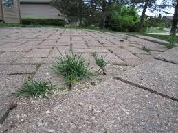 Cost Of Brick Patio Brick Pavers Canton Plymouth Northville Ann Arbor Patio Patios