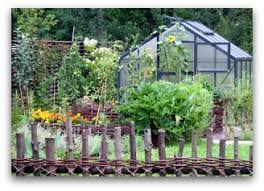 planning a vegetable garden layout for a home garden