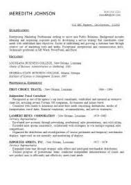 Opening Resume Statement Examples by Opening Resume Statement Examples Sample Of Resume Writing