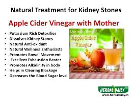 causes symptoms and natural treatment of kidney stones u2013 natures gist