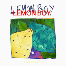 boy photo album lemon boy cavetown