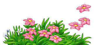 grass with pink flowers png clipart gallery yopriceville high