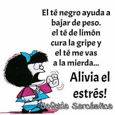 imagenes sarcasticas de risa 90 best gente tóxica images on pinterest quote dating and spanish