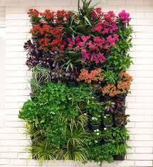 102 best in your garden images on pinterest backyard ideas