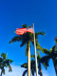free stock photo of american flag palm trees