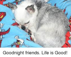 Life Is Good Meme - goodnight friends life is good friends meme on conservative memes