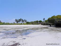 beach properties for sale in diani u2013 bush telegraph