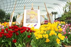10 fun facts you never knew about tulipmania at gardens by the bay