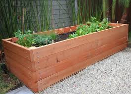 5 small urban vegetable garden ideas