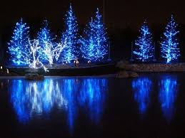 the 25 best blue christmas lights ideas on pinterest christmas