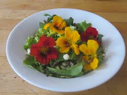 Salad With Edible Flowers - edible flowers savor the southwest