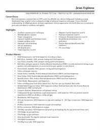 Resume Writers Houston How To Write A Strong Personal Best Resume Writing Service In