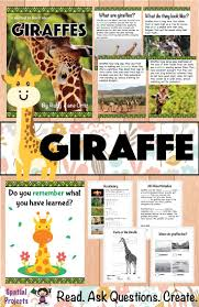 536 best animals activities for kids images on pinterest science