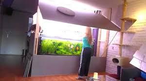 Wohnzimmertisch Aquarium Aquarium In Wand Haus Design Möbel Ideen Und Innenarchitektur