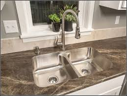 Kitchen Sink Grinder Home Decorating Interior Design Bath - Kitchen sink waste disposal