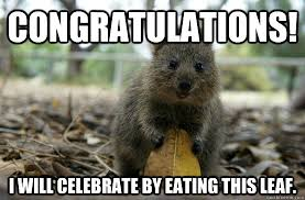 Funny Congratulations Meme - congratulations i will celebrate by eating this leaf