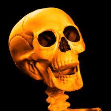 Scary Halloween Skeleton Scary Skeleton Skull Free Stock Photo Public Domain Pictures