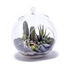 luxury terrarium u2014 jen u0026 joes design making a small terrarium