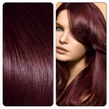 dark cherry hair google search hair pinterest dark cherry