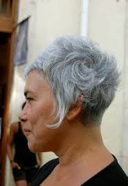 stylish cuts for gray hair myndaniðurstaða fyrir gray short wild hairstyles hair hár