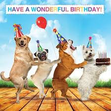 Happy Birthday Meme Dog - 16 best dog cards images on pinterest dog cards anniversary