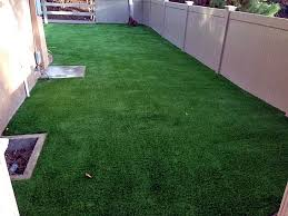 Landscaping Ideas For Backyard With Dogs Grass Turf Memphis Texas Dog Pound Backyard Landscape Ideas