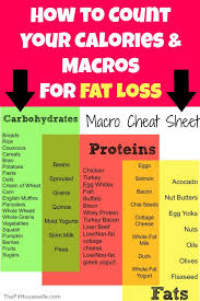 how to count your calories and macros for fat loss a permanent