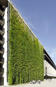 green walls jakob green wall solution from mma