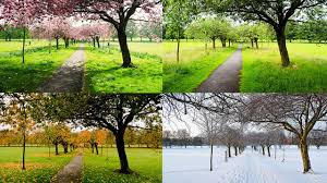 four seasons 400 beautiful nature scenery photos with music