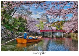 2018 japan cherry blossom photography tour japan photo guide
