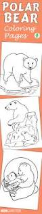top 10 free printable polar bear coloring pages online polar