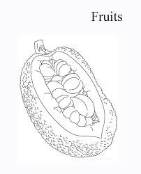 5 free jackfruit coloring pages pictures fantasy coloring pages
