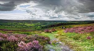 Meandering Stream Related Keywords Amp Suggestions by Yorkshire Moors Google Search England Pinterest Yorkshire