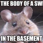 Mouse Memes - cute but evil mouse meme generator imgflip