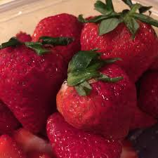 What Are The Gardening Zones - types of strawberry plants u2013 information about different