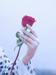 Rose Flower Images Rose Flower Hand Dp Mego Fnz Pinterest Rose