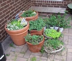 Small Patio Garden Ideas by Lawn Garden Gardenandpatiosmallfront In And Patio Small Budget On