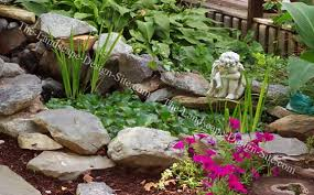 Rock Garden Ideas Rock Garden Ideas