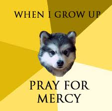 Meme Courage Wolf - courage wolf meh ro