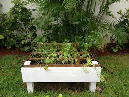 Vegetable Gardens In Florida by Square Foot Gardening In South Florida An Organic Vegetable