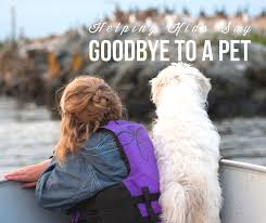 pet bereavement how to help kids grieve their beloved pet and grand rapids