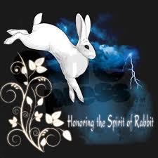rabbit merchandise merchandise trickster hares