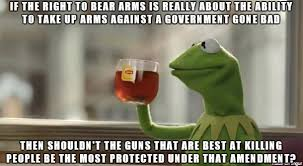 Right To Bear Arms Meme - actual serious question is killing people the purpose of the