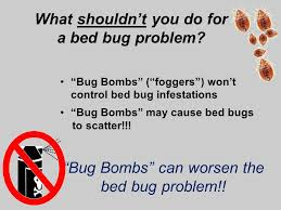 Bug Bombs For Bed Bugs Bed Bug Detection And Management In Schools Dr Ppt Online