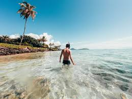 Hawaii How To Make Money Traveling images Gay honolulu guide the essential guide to gay travel in honolulu jpg