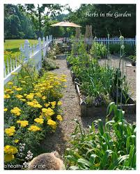 how to plan a vegetable garden layout planning ideas for your vegetable garden a healthy life for me