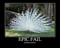 Peacock Meme - 8 best memes images on pinterest funny stuff ha ha and funny