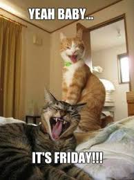 Happy Friday Memes - happy friday memes funny image memes at relatably com