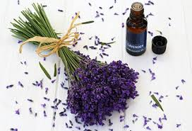 Lavender Bouquet Stress Pictures Slideshow 10 Ways To Stop Stress Now